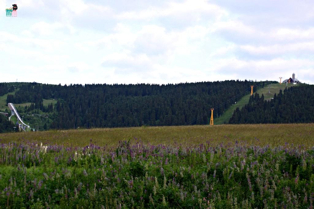 metterschlingundmaulwurfn_urlaub_erfahrungsbericht_fichtelberg_oberwiesenthalt_erzgebirge_berge (30)